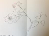 絹本講習会。 - 『一日一畫』 日本画家池上紘子