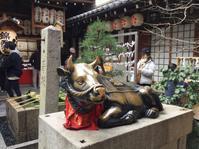 ド年末の京都錦市場へ - 猫空くみょん食う寝る遊ぶ Part2