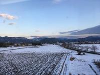 ご挨拶^_^v新年 - ~おざなりholiday's^^v~ <フィルムカメラの写真のブログ>