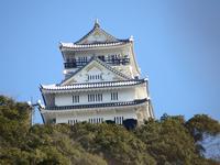 『岐阜城と三重塔と信長居館跡・・・』 - 自然風の自然風だより