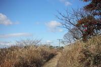冬の写んぽ道 - ecocoro日和