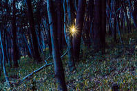 夕暮れから日和田山へ - デジカメ写真集