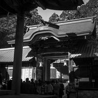 初詣の猿投神社 - Silver Oblivion