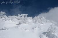 樹氷も雪の中 - Ryu Aida's Photo