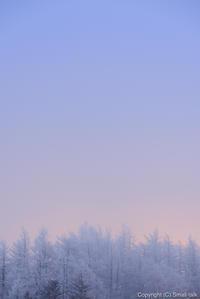 淡い日の出 - ひつじ雲日記