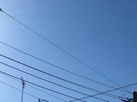 箱根駅伝みんなガンバレ! - 津軽三味線演奏家 踊正太郎オフィシャルブログ