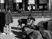 記念撮影 - カメラノチカラ