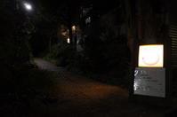 cafe 藤香想東京都豊島区要町/古民家カフェ - 「趣味はウォーキングでは無い」