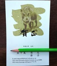 660、2019亥年明ける - 五十嵐靖之 趣味の写真と短歌
