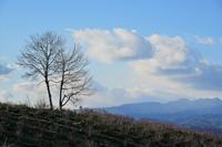 浅間山は雲の中 - 光画日記