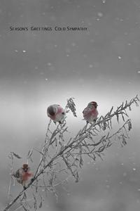 寒中見舞申し上げます - healing-bird