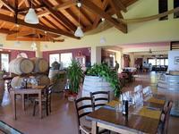 ワイナリーで美味しいワインと食事をin シチリア~両親連れて海外旅行(南イタリア編)~  - 旅はコラージュ。~心に残る旅のつくり方~