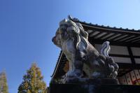 咲前神社を歩く - 風の彩り-2