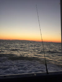 飯岡 初釣り - (鳥撮)ハタ坊:PENTAX k-3、k-5で撮った写真を載せていきますので、ヨロシクですm(_ _)m