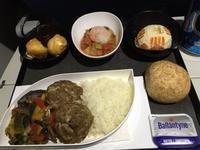 機内食(ターキッシュエアラインズ:TK053便) - せっかく行く海外旅行のために