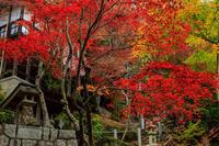 滋賀の紅葉2018磨崖仏の寺(不動寺) - 花景色-K.W.C. PhotoBlog