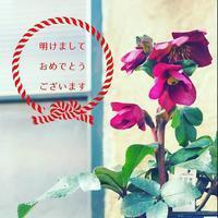 今日からスタート!! - さにべるスタッフblog     -Sunny Day's Garden-