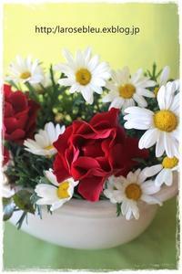 'バルバラ'と白いマーガレット - La rose 薔薇の庭