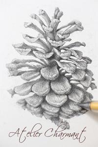 理想のデッサン(デッサンその⑦) - Atelier Charmant のボタニカル・水彩画ライフ