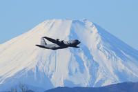C-130(ハーク)と富士山 - 飛行機&鉄道写真館
