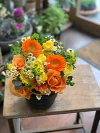 新春フラワーギフトたち - ルーシュの花仕事