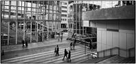 Shibuya Stream - コバチャンのBLOG