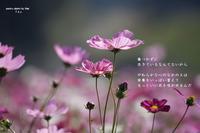 土 - Poetry Garden 詩庭