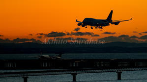 美しき翼593(夜明けのジャンボ) - 飛行機三昧