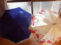 ★ 傘がオチョコに・・・ - うちゅうのさいはて