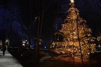 冬の軽井沢③:Hotel Bleston Court - 雑木林の家から-nishio