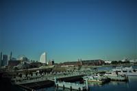 横濱ブルー - SOLiD「無垢材セレクトカタログ」/ 材木店・製材所 新発田屋(シバタヤ)