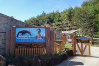 2018/10/06 那須どうぶつ王国5 ペンギンビレッジ~カピバラの森 - 墨色の鳥籠