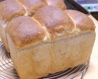 初焼き! - ~あこパン日記~さあパンを焼きましょう