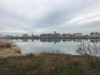 今年も初釣行は淀川本流 - WaterLettuceのブログ