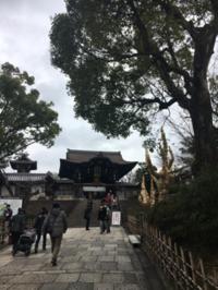 大谷さんへお参りと京都紅茶倶楽部 - 京都西陣 小さな暮らし