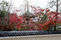 嵐山紅葉2018 - 写真部