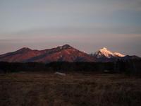 冬の静けさが戻ってきました - 八ヶ岳 革 ときどき くるみ