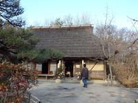 『今年初めての木曽川水園散策・・・・・』 - 自然風の自然風だより