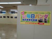 米子高島屋【毎日パンダ 高氏貴博写真展】展示の様子と作品です1月7日(月)です。 - 雑貨・ギャラリー関西つうしん