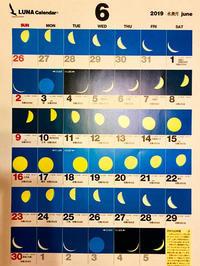 オオクワ灯火採集に向けた  moon age『月齢カレンダー』 2019年度 - Kuwashinブログ