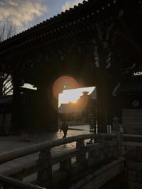 京都、冬の散策Ⅰ - ライブ インテリジェンス アカデミー(LIA)