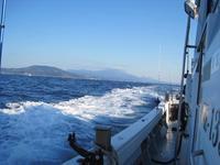 初釣りは乗合船で鯛釣りに行きました - ステンドグラスルーチェの日常