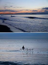 2019/01/07(MON) 空気が冷たい朝の海辺で.......。 - SURF RESEARCH