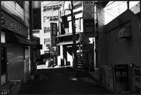 中野-17 - Camellia-shige Gallery 2
