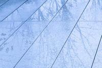 冬の雨は - となりのフォトロ