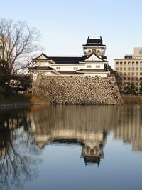 浮城・富山城 - タビノイロドリ