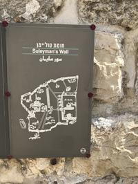 Turkiye → Israel 11 (エルサレム旧市街の城壁を歩く Ramparts Wark) - Rock de pon