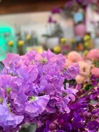 ●楽しい●早春のお花がいろいろと揃ってきました - ルーシュの花仕事