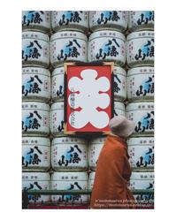 大入 - ♉ mototaurus photography