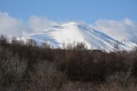 北軽井沢で見る浅間山② - 光画日記